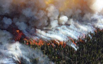 Warga Membantu Memadamkan Kebakaran Hutan Dan Lahan