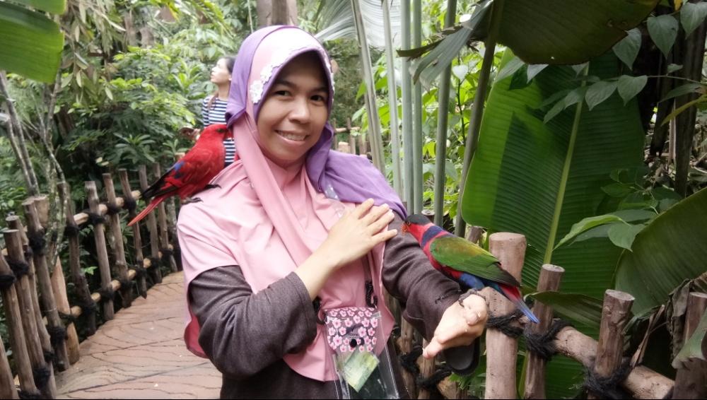 Bird park safari garden hotel