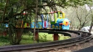 mini train safari garden hotel