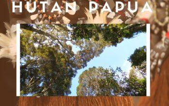 Yuk Jaga Hutan Untuk Kelestarian Hutan Indonesia
