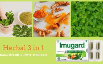 Mengonsumsi Herbal 3in1 Untuk Daya Tahan Tubuh